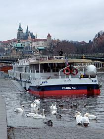 private Moldau - Schiffstour in Prag